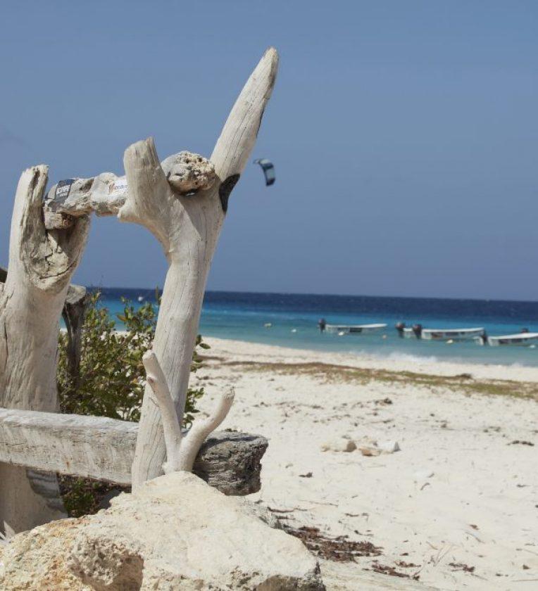Bonaire_Ialand_WashingtonSlagbaaiNationalPark_227