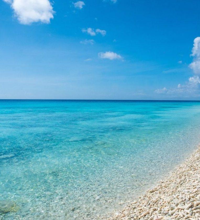 DolfijnGO Vakantie Bonaire De beste stranden Pink Beach