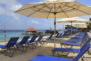 Flamingo Beach 1