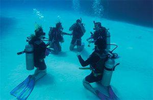 Group Meeting on the Ocean Floor