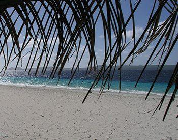 no name beach 1 xl