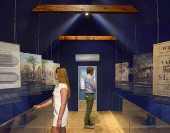 terramar-museum-1-xl